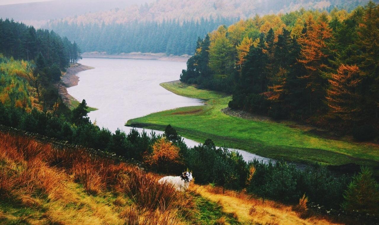 9 причин, поему мы любим осень