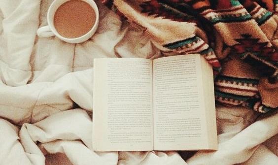книга, книги, чтение, цитаты, цитата дня